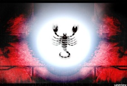 Explore Horoscope For Scorpio