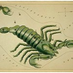 Scorpio Dates and other informative predictions good to know